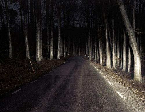 dark-road-wag1mag