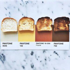 pantones-toasts-wag1mag